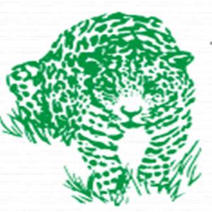cropped-512-Logo.jpg
